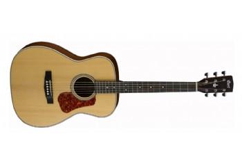 Gitarlar Fiyat Ve Modelleri