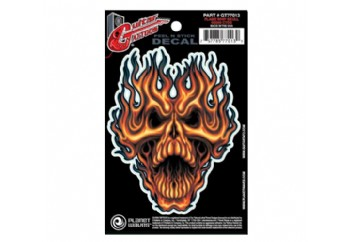 Planet Waves Flame Whip Skull